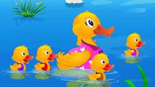 cinq canetons en français - comptines et chansons pour les enfants - ChuChu TV.