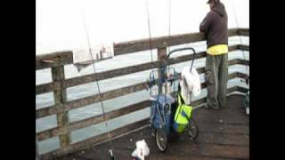 Fishing at Oceanside California USA.mp4