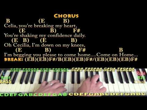97 Mb Cecilia Simon And Garfunkel Chords Free Download Mp3