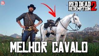 RED DEAD REDEMPTION 2 - MELHOR CAVALO GRÁTIS DO JOGO    COMO PEGAR e LOCALIZAÇÃO