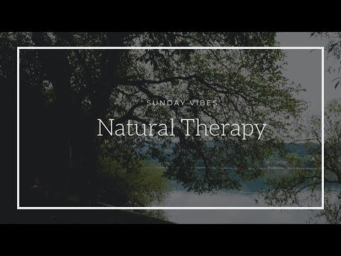 Closer to the Nature and Natural therapy | Switzerland Forest and Greifensee Lake