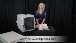 "Pets On Airplanes: ""how To Measure Your Pet For Airline Crate"""