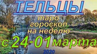ГОРОСКОП ТЕЛЬЦЫ С 24 ФЕВРАЛЯ ПО 01 МАРТА.2020