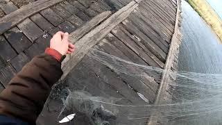 Рыбалка КАСТИНГОВОЙ сетью в СИБИРИ Плотва Окунь Сазан
