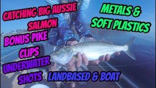 Catching Big Australian Salmon in Mornington, Ep034