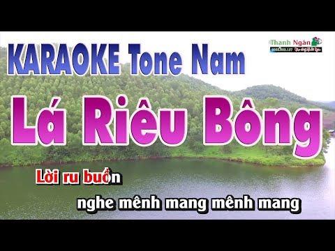 Lá Diêu Bông Karaoke   Beat Chất Lượng Cao ( Tone Nam ) - Nhạc Sống Thanh Ngân