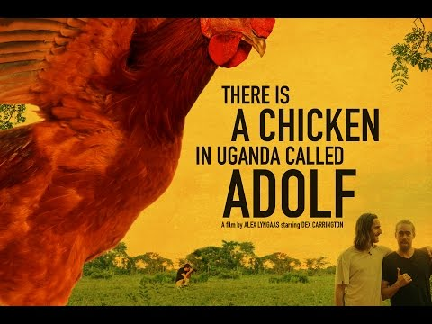There is a Chicken in Uganda called Adolf