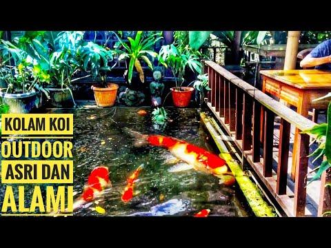 kolam koi outdoor di area rumah makan ini asri dan indah