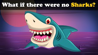 What if there were no Sharks? | #aumsum #kids #science #education #children