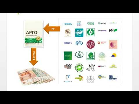 Структурный кэшбэк компании Арго (cashback)