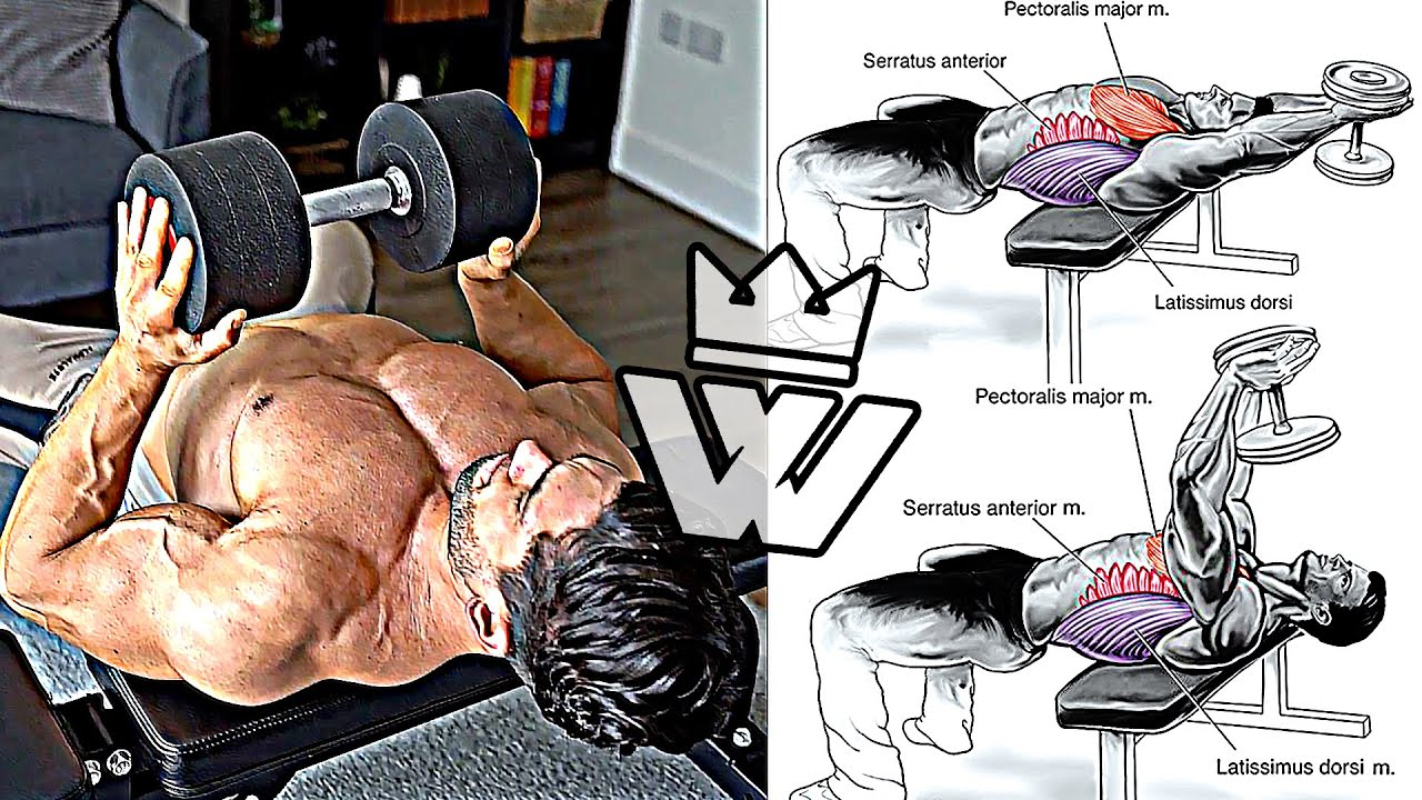 SHOULDER & CHEST WORKOUT (At Home Minimal Equipment)