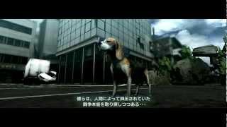 繁殖力高い --- TOKYO JUNGLE http://www.youtube.com/playlist?list=PL...