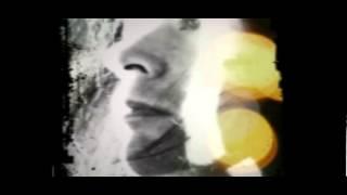 Deepression Falls--The Hive(with Lyrics)