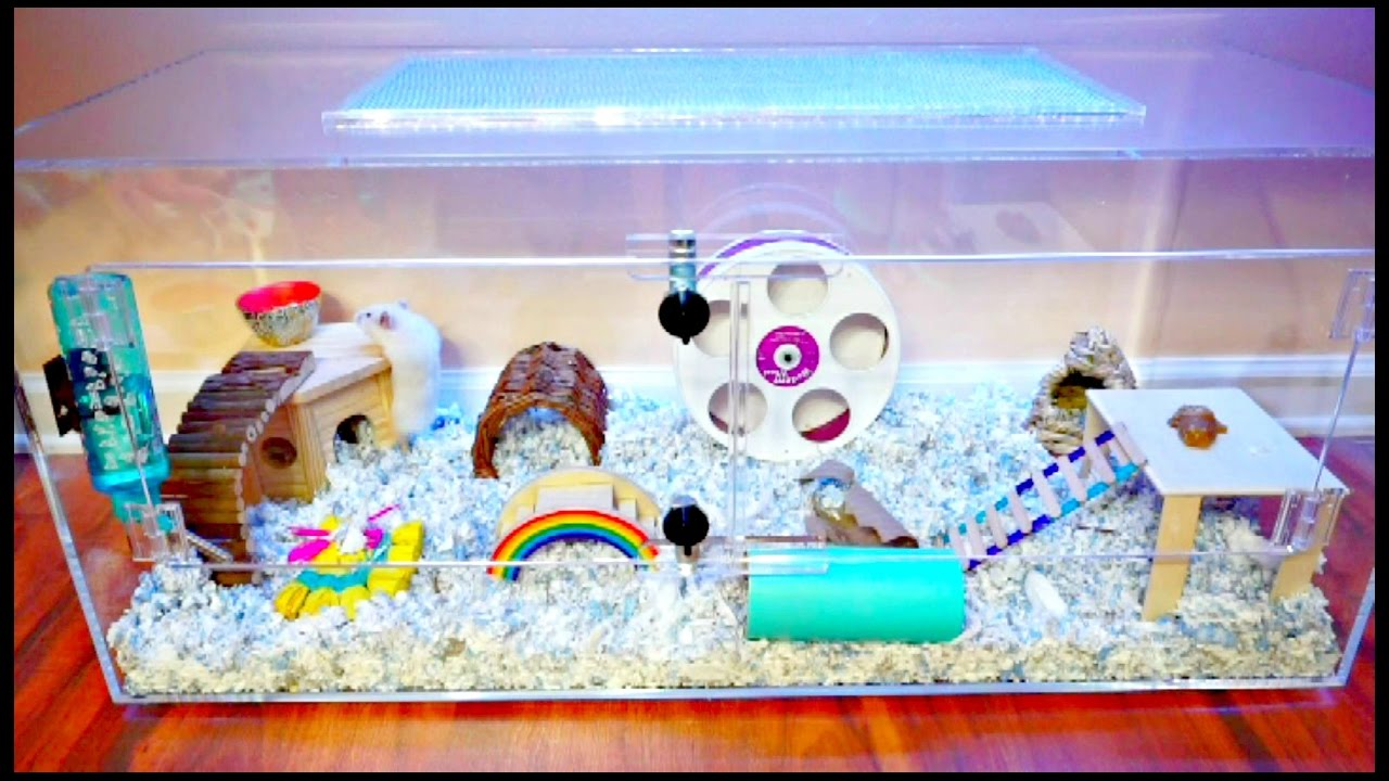 Hamster cage acrylic cage tank terrarium mochi 39 s new for Acrylic vs glass fish tank