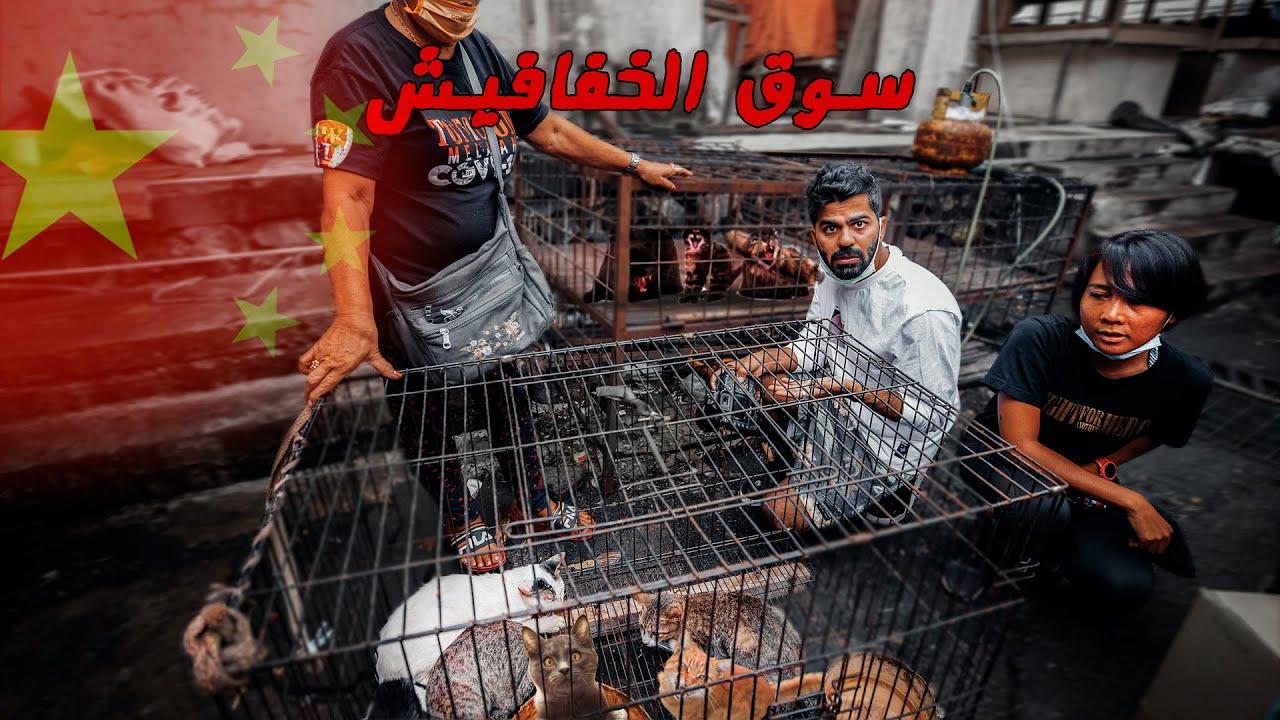 رجعت على أخطر وأغرب وأبشع سوق بالعالم !! وحررنا القطط - SCARIEST Meat Market