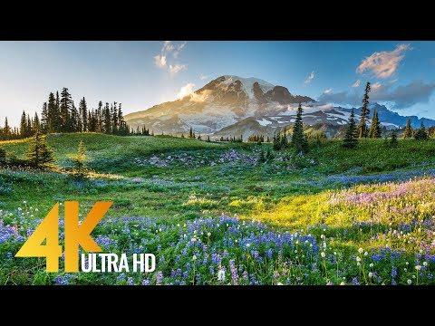 4K Mount Rainier