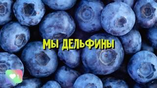 Настя Кош - Мы Дельфины (текст)