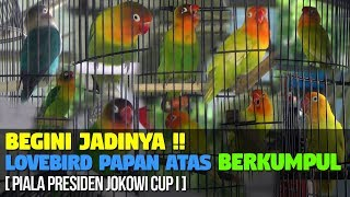 Video BEGINI JADINYA !! JIKA LOVEBIRD PAPAN ATAS BERKUMPUL [ PIALA PRESIDEN JOKOWI CUP I ] download MP3, 3GP, MP4, WEBM, AVI, FLV Oktober 2018