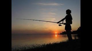 Рыбалка на Протве 30 июня 2018. Фидер