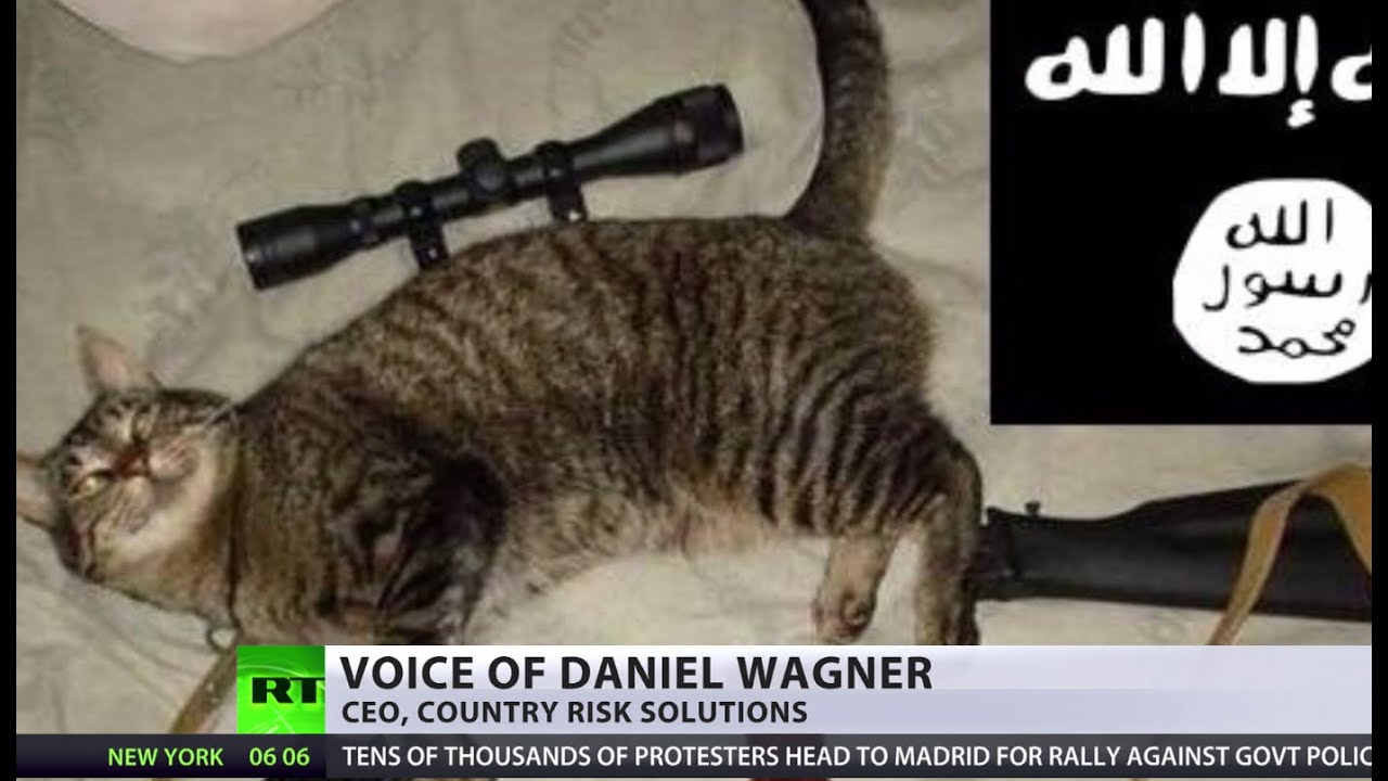 Cats, dogs & guns: No atrocities in new ISIS propaganda ...