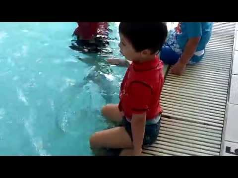 Swimming Lessons - Ryde Aquatic Centre