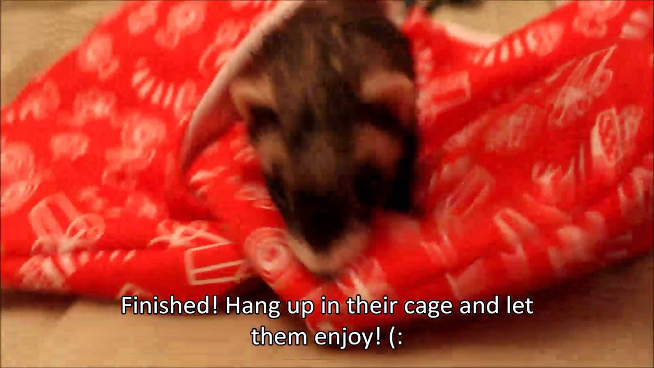 How To Sew A Pocket Hammock For Ferrets Youtube