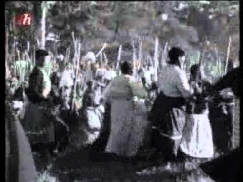 Histoire de l'Apartheid (part 2)