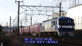 2019/02/21 JR貨物 強風吹き荒れる湖西界隈 朝の貨物列車5本 1055レに桃901号機