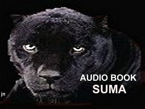 SUMA the Black Panther - Der schwarze Panther
