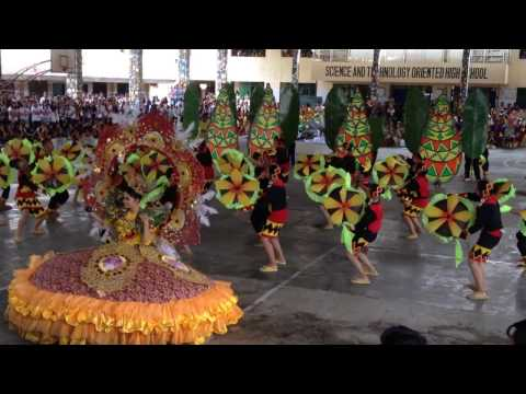 ANHS Festival Dance - Section Diamond (S.Y. 2016-2017)