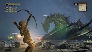 Dragon Dogma Online : Trying out hunter class