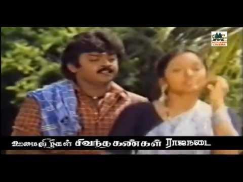 Solai Kiligal Rendu Song    kovil kaalai   Vijayakanth   Ilaiyaraja   Mano   சோலகிளிகள் ரெண்டு