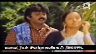 Solai Kiligal Rendu Song |  kovil kaalai | Vijayakanth | Ilaiyaraja | Mano | சோலகிளிகள் ரெண்டு