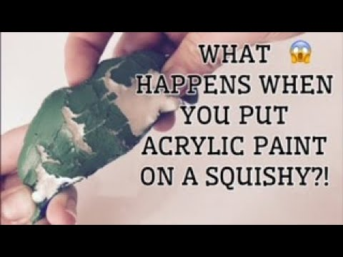 WHAT HAPPENS WHEN YOU PUT ACRYLIC PAINT ON A SQUISHY!