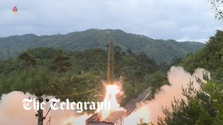 video: North Korea reveals new missile system that can be launched from the back of a train