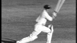 Watch Paul Kelly Bradman video