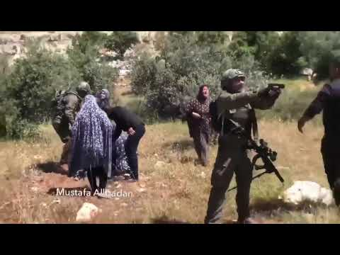 Israeli Soldiers Shoot Bound, Blindfolded Palestinian Teen