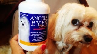 Dog Product Review - Angel Eyes Week 1 (For Tear Staining)