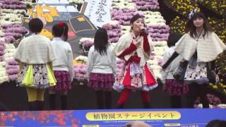 弘前城菊と紅葉まつり りんご娘ライブ から「トレイン」です。前半MC...