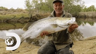 Jeremy Wade Finds Rare Fish That Were Affected By The Cane Toad Invasion | Jeremy Wade's Dark Waters