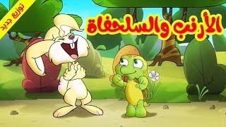 الأرنب والسلحفاة (توزيع جديد) - طيور بيبي Toyor Baby
