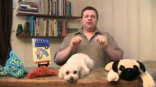 Dog Training - How To Train Your Dog With Positive Reinforcement