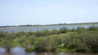 Половодье в Астраханской дельте