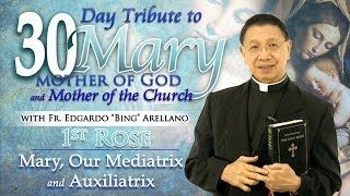 30 DAY TRIBUTE TO MARY  1st ROSE:  Mary, Our Mediatrix and Auxiliatrix