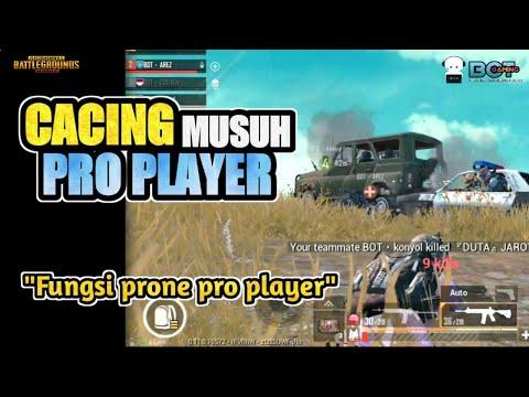CACING GAMING, P3mbunuh Pro Player   PUBG Mobile