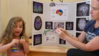 Make Your Own Neuron and Learn About the Brain
