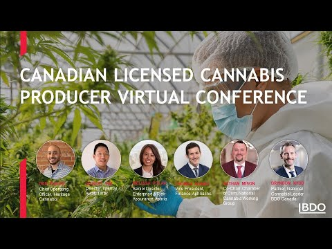 Canadian Licensed Cannabis Producer Virtual Conference | BDO Canada