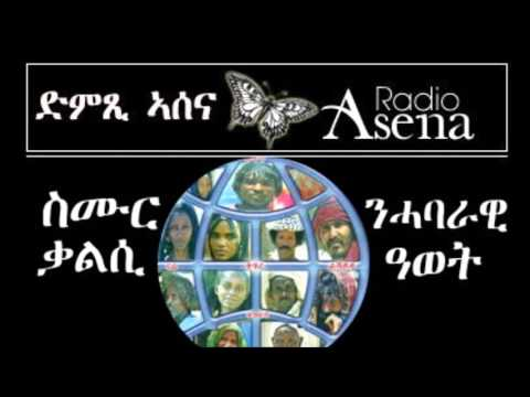 Voice of Assenna: United Action Yields Mutual Success
