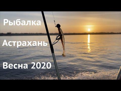 """РЫБАЛКА В АСТРАХАНИ 2020! Ловля судака ранней весной на базе """"Никольское""""."""