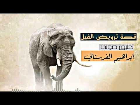 قصة ترويض الفيل ،، #تعليق_صوتي : إبراهيم الفرستالي